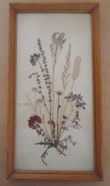 Bild mit gepressten Blumen - DDR - Nr. 4