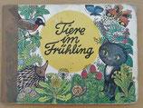 Tiere im Frühling - Pappbilderbuch