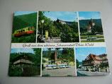 Ansichtskarte - Gruß aus dem schönen Schwarzatal/Thür. Wald