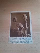 Ansichtskarte - Blumenkarte