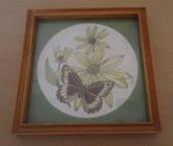 Kleiner Bilderrahmen mit Schmetterling
