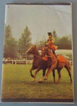 Schreibheft A5 mit Reiter und zwei Pferden