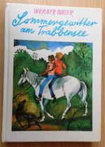 Werner Bauer - Sommergewitter am Trabbensee - Der Kinderbuchverlag Berlin