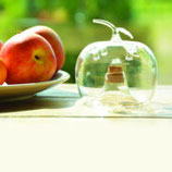 Fruchtfliegenfalle durchsichtig