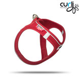 curli Magnetic Angebot