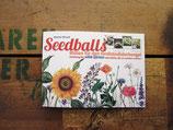 Seedballs - Broschüre
