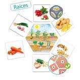 D'où viennent les aliments ?