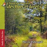 Chants d'oiseaux des bois et forêts