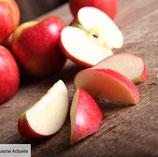 W481 - Pommes en tranches
