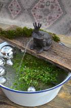 Wasserpumpe Froschkönig