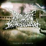 DISARTICULATING EXTINGUISHMENT - Psalms Of Wrath CD