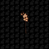ZODIAC - Menschenstaub LP