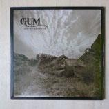 """GUM """"Agua Galiente"""" LP"""