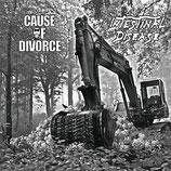 Cause of Divorce / Intestinal disease - Split LP