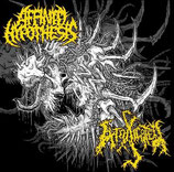 AFFINITY HYPOTHESIS / INTOXICATED  Split CD