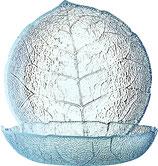 Glasteller 14,5 cm Aspen transparent
