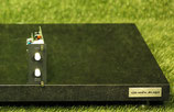 Accuphase DIO2 DG1 Option Board