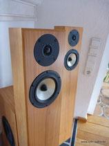 Ispeak Teilaktive Lautsprecher