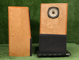 Lowther Acousta 115 / Lowther DX-2