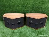 Bose 901 Series V