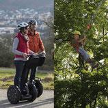 Incentive Halbtagesausflug Segway-Tour Baumklettern