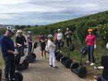 Segway-Tour Weinerlebnisführung Markelsheim