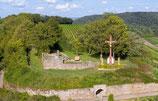 Segway-Tour Heilbronn Weinberg Scheuerberg