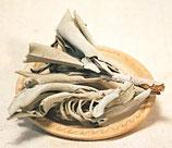 weißer Salbei Bündel oder Smudge