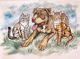 Portrait personnalisé de vos 3 animaux de compagnie