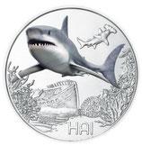 Tiertaler Hai 2018 ohne Folder