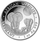 Somalia Elefant 2014