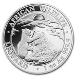 Somalia - Leopard 2019