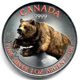 Kanada - Predators Grizzly koloriert 2019