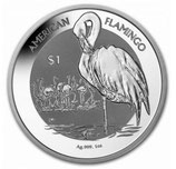 British Virgin Islands - Flamingo 2021