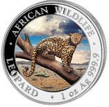 Somalia -  Leopard 2021 coloriert