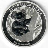 Australien - Koala 2013