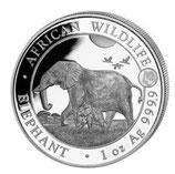 Somalia - Elefant 2022 privy Tiger