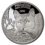 Kongo - Predators Puma 2020