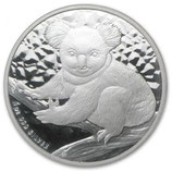 Australien - Koala 2009