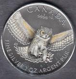 Kanada Birds of Prey Eule 2015 koloriert