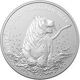 Australien - Sumatra Tiger 2020