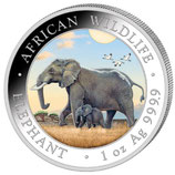 Somalia - Elefant 2022 coloriert