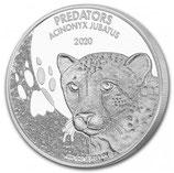 Kongo - Predators Gepard 2020