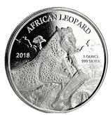 Ghana - Afrikanischer Leopard 2018