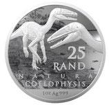 Südafrika - Dinosaurier Coelophysis 2020