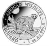 Somalia - Leopard 2021