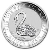 Australien - Schwan 2021