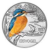 Tiertaler Eisvogel 2017 mit Folder