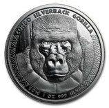 Kongo - Silberrücken Gorilla 2016