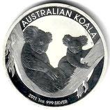 Australien - Koala 2011